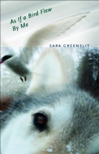 As If a Bird Flew By Me: A Novel, by Sara Greenslit (FC2, 2011)