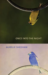 Once into the Night, by Aurelie Sheehan (FC2, 2019)