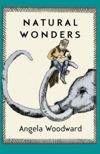 Natural Wonders, by Angela Woodward (FC2, 2016)