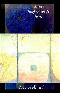 What Begins With Bird, by Noy Holland (FC2, 2005)